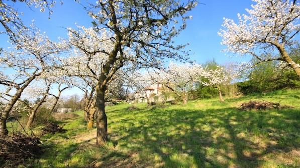 Cours d'introduction à la permaculture dans le Rhône