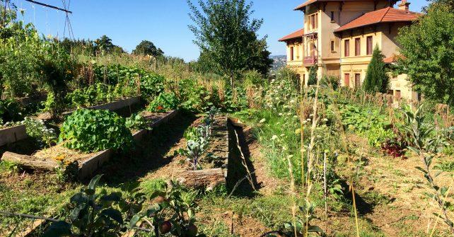 Jardin et permaculture : chantier participatif