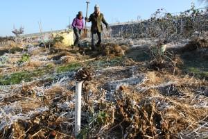 chantier participatif permaculture rhone