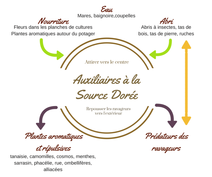formation permaculture